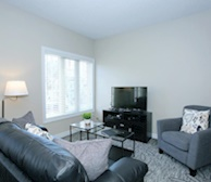 Living Room Free WiFi Fully Furnished Apartment Suite Kleinburg #12