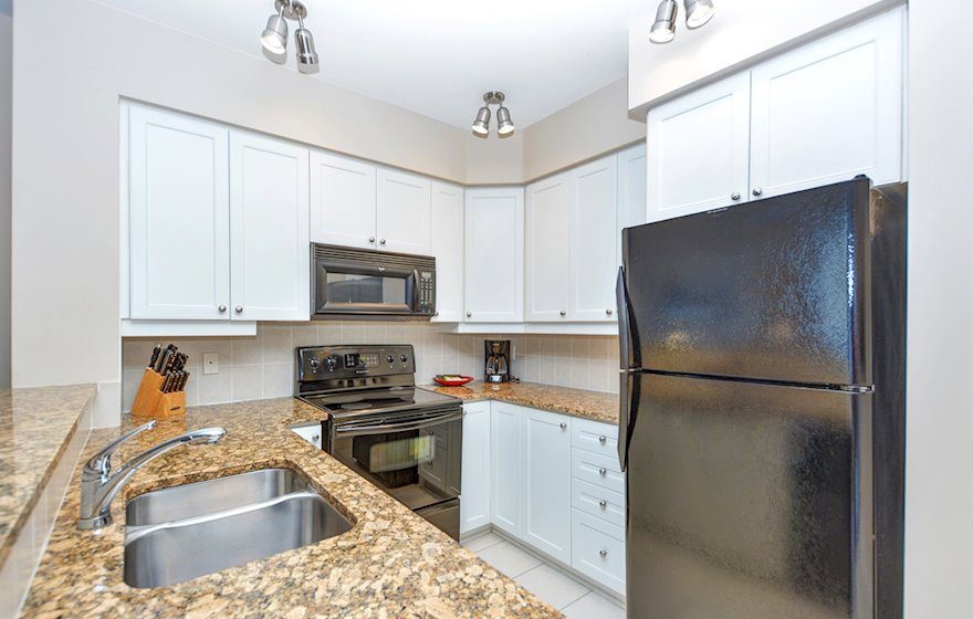 1606 Kitchen Fully Equipped Five Appliances Ottawa